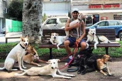 Тель-Авив объявил себя самым дружественным для собак городом в мире